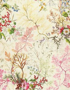 Textile Patterns, Textile Prints, Textile Design, Print Patterns, Floral Prints, Lino Prints, Floral Patterns, Block Prints, Fabric Wallpaper