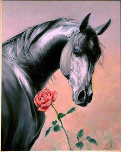 Cavalo e rosa - http://www.facebook.com/photo.php?fbid=541744969209580=a.313998288650917.87586.311026642281415=1=nf - 577085_541744969209580_1515740548_n.jpg (572×720)