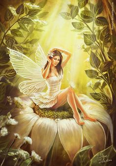 fairy drawings | Fairy Art: Pictures of Fairies - Fairies Illustrations