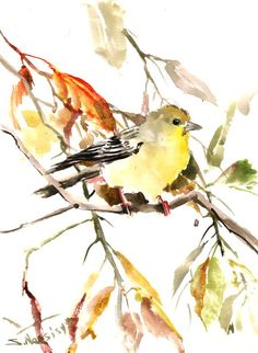 Goldfinch original watercolor painting yellow fall by ORIGINALONLY, $28.00