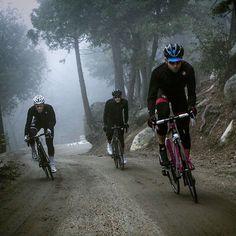 Sport is lifre Cycling Art, Road Cycling, Cycling Quotes, Cycling Jerseys, Bmx, Montain Bike, Bike Pic, Bike Photography, Commuter Bike