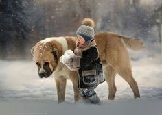 winter day by Elena Shumilova - Photo 182883381 / Dogs And Kids, Big Dogs, Animals For Kids, Animals And Pets, Dogs And Puppies, Funny Animals, Cute Animals, Doggies, Beautiful Dogs