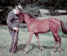 Winston Churchill with animals