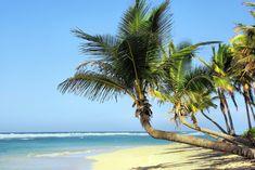 Mojito, cygara i salsa, czyli Kuba – perła Karaibów