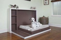 Pull out pet bed-maybe for under the window in office?