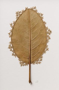 """culturenlifestyle: """"Delicate Crochet Leave Sculptures by Susanna Bauer Susanna Bauer is an artist who works with the embroidery technique of crocheting on fragile dry magnolia leaves. Crochet Leaf Patterns, Crochet Leaves, Land Art, Image Beautiful, Art Au Crochet, Crochet Blogs, Free Crochet, Magnolia Leaves, Saatchi Gallery"""