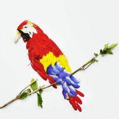 лепестки и птицы