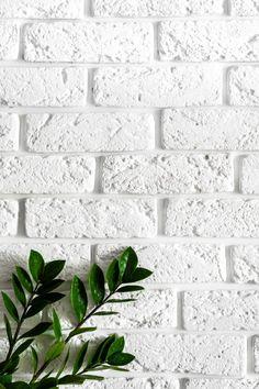 Download more Premium stock photos on Freepik Brick Wallpaper Iphone, White Wallpaper For Iphone, White Background Wallpaper, White Brick Wallpaper, Plant Background, White Brick Walls, Brick Wall Background, Plant Wallpaper, Wallpaper For Your Phone