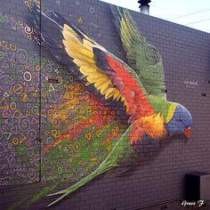 Perth daily photo – Graffiti World 3d Street Art, Urban Street Art, Murals Street Art, Amazing Street Art, Art Mural, Street Art Graffiti, Street Artists, Best Street Art, Urban Graffiti