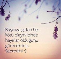 #sabret #vardır #bundada #bir #hayır #aşk #love #sevgi #mutluluk #happy #sokakmodasi #sokakyazıları #duvaryazıları #askmeclisicom #mutluluk #özlemek #kavuşmak #şiir #türkiye #istanbul #derttaş #edebiyat #hasret #melek #izmir #yunusemre #mevlana #şemsitebrizi #cemalsüreya #namıkkemal