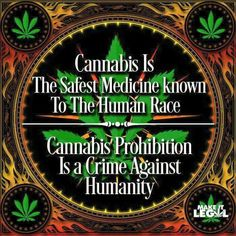 """""""People that judge marijuana normally aren't educated about how it works to stops pain or how it gives life back to millions, they'll learn the hard way"""" -Morgan Freeman, outspoken actor & cannabis activist/patient (Fibromyalgia & Childhood Epilepsy)"""