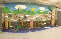 Amazon Rainforest display which was part of a thematic unit. Created by my ELL students.
