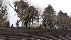 Parque Dr. Manuel Braga em Coimbra, Coimbra