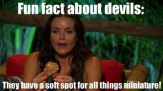 Fun facts about devils:  #thebachelor