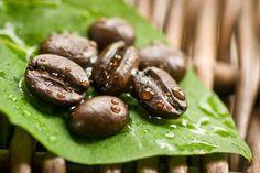 organic coffee beans - Google Search