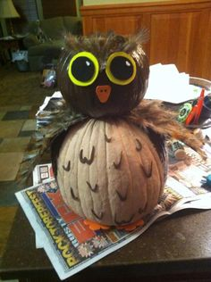 Me and my little sister made this pumpkin for her school contest...She won first place :) Owl Pumpkin Painting instead of carving