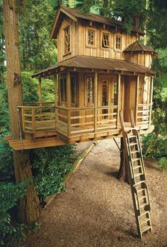 Treehouse Masters' Pete Nelson: 5 Things Every Beginning Builder Must Know. I swear my future studio will be a tree house lol Treehouse Masters, Patio Grande, Cool Tree Houses, Tree House Designs, Tree Tops, Shed Plans, House Plans, Cabins In The Woods, In The Tree