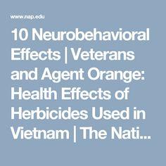 The Vietnam War and Its Impact - Vietnamese veterans