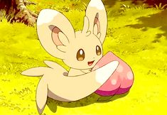 Minccino is one of my favorite pokemon is because its voice is squeaky and cute, its soooo adorable, Pokemon Gif, Pokemon Team, Pokemon Memes, Pokemon Fan Art, Pokemon Stuff, Eevee Cute, Pokemon Eeveelutions, Cute Pokemon Wallpaper, Cute Cartoon Wallpapers