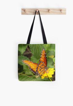 Orange Butterfly by Judi Saunders
