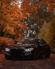 - BMW at slide. « spectacular On Bmw Sports Car, Sport Cars, Bmw M4, Bmw Wallpapers, Best Luxury Cars, Audi Cars, Car Photography, Car Photos, Cool Cars