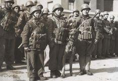 Mascottes du Barbarigo à Rome en février 1944 avant le départ pour le front d'Anzio-Nettuno
