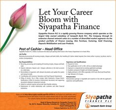 Siyapatha Finance PLC is seeking candidate for Accounts Executives position. You need bachelors degree in accounting business sdminstration, finance or commerce. Executive Jobs, Account Executive, Job Images, Accounting Jobs, Sample Resume, Catering, Finance, Catering Business, Gastronomia
