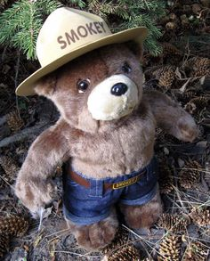An 18 Smokey Doll without a shovel and with a hat that is more sturdy to withstand handling by children. Teddy Bear Cartoon, Teddy Bears, Smokey The Bears, National Park Posters, Bear Decor, Doll Home, Paddington Bear, Barbie Toys, Love Bear