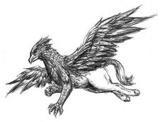 hippogriff | Hippogriff by Ciarra