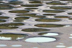 El lago manchado, unla concentración alcalina endorréica salina de Canadá: contiene algunas de las más altas concentraciones de sulfato de magnesio, calcio y sulfatos de sodio en el mundo.   30 fenómenos naturales que no creerás que existen
