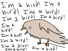 """What's that bird thinking?"""