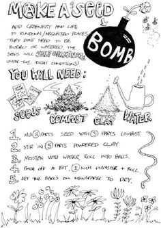 How to make seed bombs: Guerrilla Gardening Workshop