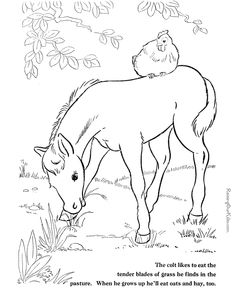 These Free Printable Horse Coloring Picture Of Farm Animals Provide Hours Online And At Home Fun For Kids