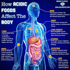 Every organ in the body is affected by acidity. Our lungs, bones, brain, heart, liver, kidneys, stomach, intestines and skin. Bottom line – if your body is too acidic, then you're not going to be feeling that great. When our bodies enter a state of acidosis, it becomes the perfect breeding ground where illness and …