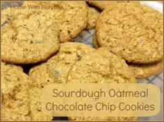 Sourdough Oatmeal Chocolate Chip Cookies