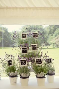 #escort #cards #lavender #chalkboard Photography: Marianne Taylor Photography - mariannetaylorphotography.co.uk  Read More: http://stylemepretty.com/2013/10/11/english-garden-wedding-from-marianne-taylor-photography/