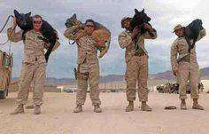 Marines and their dogs!  OOORAH!