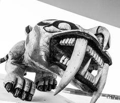 """Tigre de bengala"" by Ednelson Santos on 500px"