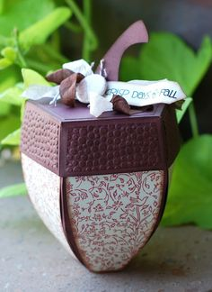Paper Creations by Kristin: (another) Acorn Box!