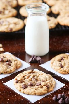 Hazelnut Butter Cookies. Soft, chewy cookies made with creamy hazelnut butter!