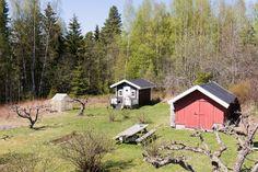 FINN – HELGØYA: Landlig og idyllisk eindom med nærhet til Mjøsa. Usjenert beliggenhet med store friområder i nærheten.