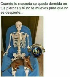#moriderisa #cama #colombia #libro #chistgram #humorlatino #humor #chistetipico #sonrisa #pizza #fun #humorcolombiano #gracioso #latino #jajaja #jaja #risa #tagsforlikesapp #me #smile #follow #chat #tbt #humortv #meme #chiste #mascota #yo #estudiante #universidad