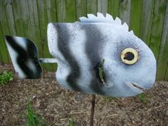 Shovel Fish