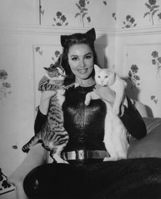 Lee Meriwether, Eartha Kitt or Julie Newmar: Who Was Your Favorite TV Catwoman? - Page 2 - Sitcoms Online Message Boards - Forums