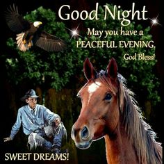 Good Night Sweet Dreams Good Night Blessings, Night Pictures, Good Night Sweet Dreams, Good Night Quotes, Cowboy And Cowgirl, Qoutes, Quotations, Good Morning, Dreaming Of You