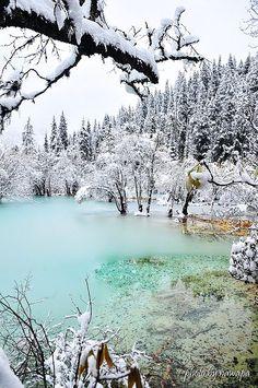 ✯ Winter Slough