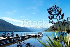 Looking down the pier to the distant Sabine Ranges at Lake Rotoroa,. New Zealand Landscape, Kiwiana, Image Now, Nature Photos, Lakes, Wilderness, National Parks, Landscapes, Scenery