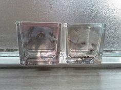 Waxinelichthouder met eigen foto