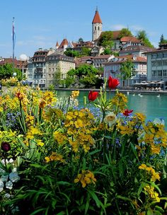 Thun, Bern, Switzerland, what a beautiful city in the summer time .. was .there in 71 j michael