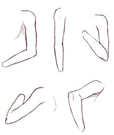 How to draw arms reference
